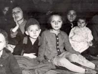 child-survivor-fund