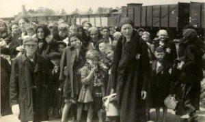 Holocaust Study Auschwitz Album Yad Vashem